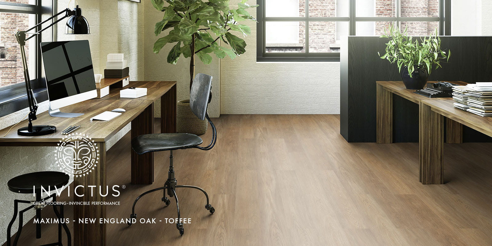 New England Oak lvt